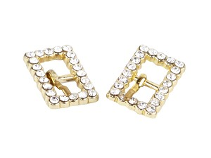 Rhinestone Buckles in gold color